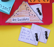 Ant hill activity with ants questions and answers  from www.daniellesplace.com