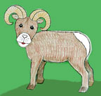 sunday school bighorn sheep bible craft