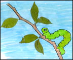 inchworm inch worm color sheet colorsheet and activity  sheet