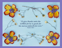sunday school air dried flowers picture and bible verse craft