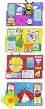 Bug Buddies Studies for Home school