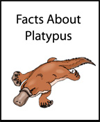 """Facts About Platypus"" Printable Itty Bitty Book"
