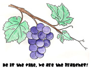 sunday school vine and Branches bible Craft