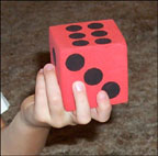 counting wool dice picture