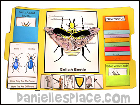 Goliath Beetle Lap Book Lesson from Bug Buddy Studies Series from www.daniellesplace.com