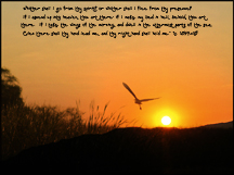 Christian Wallpaper Pelican and Sunrise