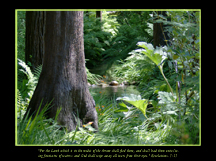 Mount Hermon Creek Christian Wallpaper