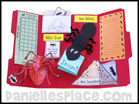 Ant Bug Buddy Study Home School Lapbook Lessons from www.daniellesplace.com