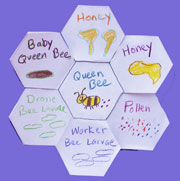Hexagon Bee Hive Fold-Out Shape Book  from www.daniellesplace.com