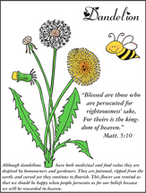 Dandelion and Bible Verse Coloring Sheet from www.daniellesplace.com
