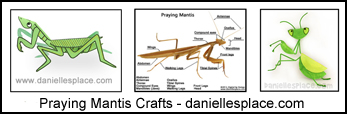 Praying Mantis Crafts and Learning Activities for Kids