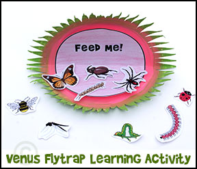 Venus Flytrap paper plate craft with insect printable sheet.  Children see how many bugs they can identify and/or place them in subphylums from www.daniellesplace.com