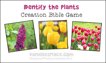 Identify the Plants Creation Bible Game