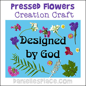 Pressed Flower Creation Craft from www.daniellesplace.com