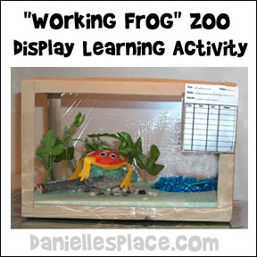 Frog Display Learning Activity
