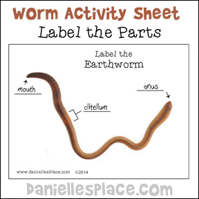 Label the Earthworm Printable Activity Sheet from www.daniellesplace.com