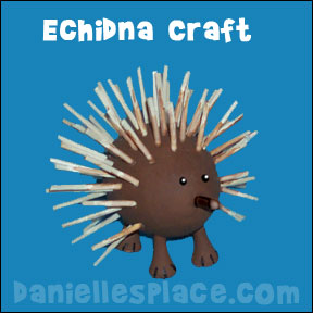 Echidna Craft For Kids
