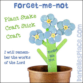 forget me not plant stakes