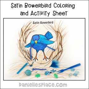 Bowerbird Coloring and Activity Sheet