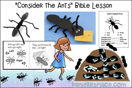 photo relating to Free Printable Children's Church Curriculum known as Totally free Sunday University Lesson - Get the Ants