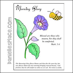 morning glory beatitude coloring sheet