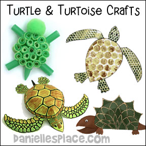 Turtle Tortoise Crafts