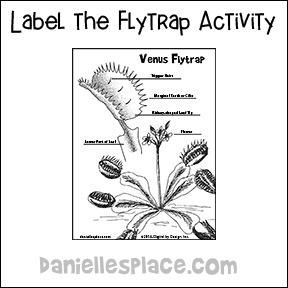 Venus fly trap crafts and learning activities for children label the parts venus flytrap activity ccuart Choice Image