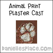 Animal Tracks plaster cast