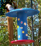 Bird Feeder Paper Plate Craft